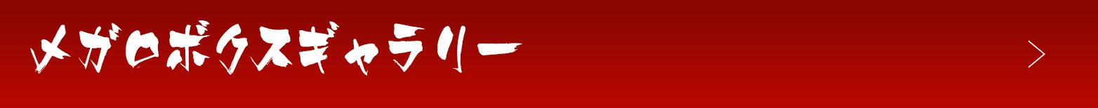 メガロボクスギャラリー