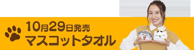 マスコットタオル紹介記事 リンク