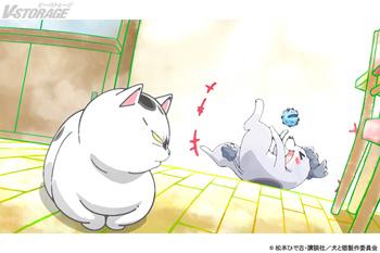 『犬と猫どっちも飼ってると毎日たのしい』1月22日(金)放送 #15「おたんじょうび」場面写真公開!