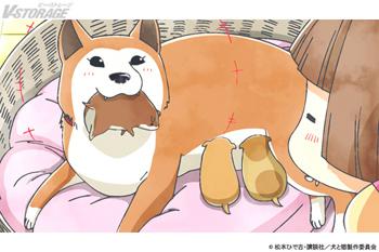 『犬と猫どっちも飼ってると毎日たのしい』2月26日(金)放送 #20「お母さん」場面写真公開!